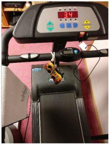 treadmill-and-xbox